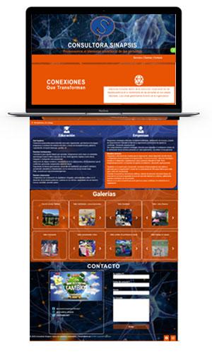 LION-Creativos-DISEÑO-WEB-Consultora-Sinapsis